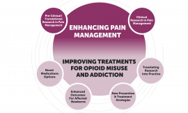 NIMH and the NIH HEAL Initiative: Collaborating to address the opioid epidemic