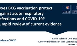 Association of Bacille Calmette-Guerin (BCG), Adult Pneumococcal and Adult Seasonal Influenza Vaccines with Covid-19 Adjusted Mortality Rates in Level 4 European countries