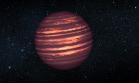 Citizen scientists spot closest young brown dwarf disk yet