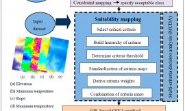 Environmental and social analysis as risk factors for the spread of the novel coronavirus (SARS-CoV-2) using remote sensing, GIS and analytical hierarchy process (AHP): Case of Peru