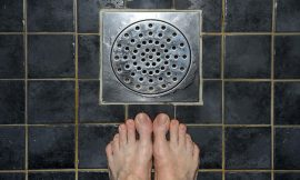 Our shower drains are a breeding ground for drug-resistant bacteria