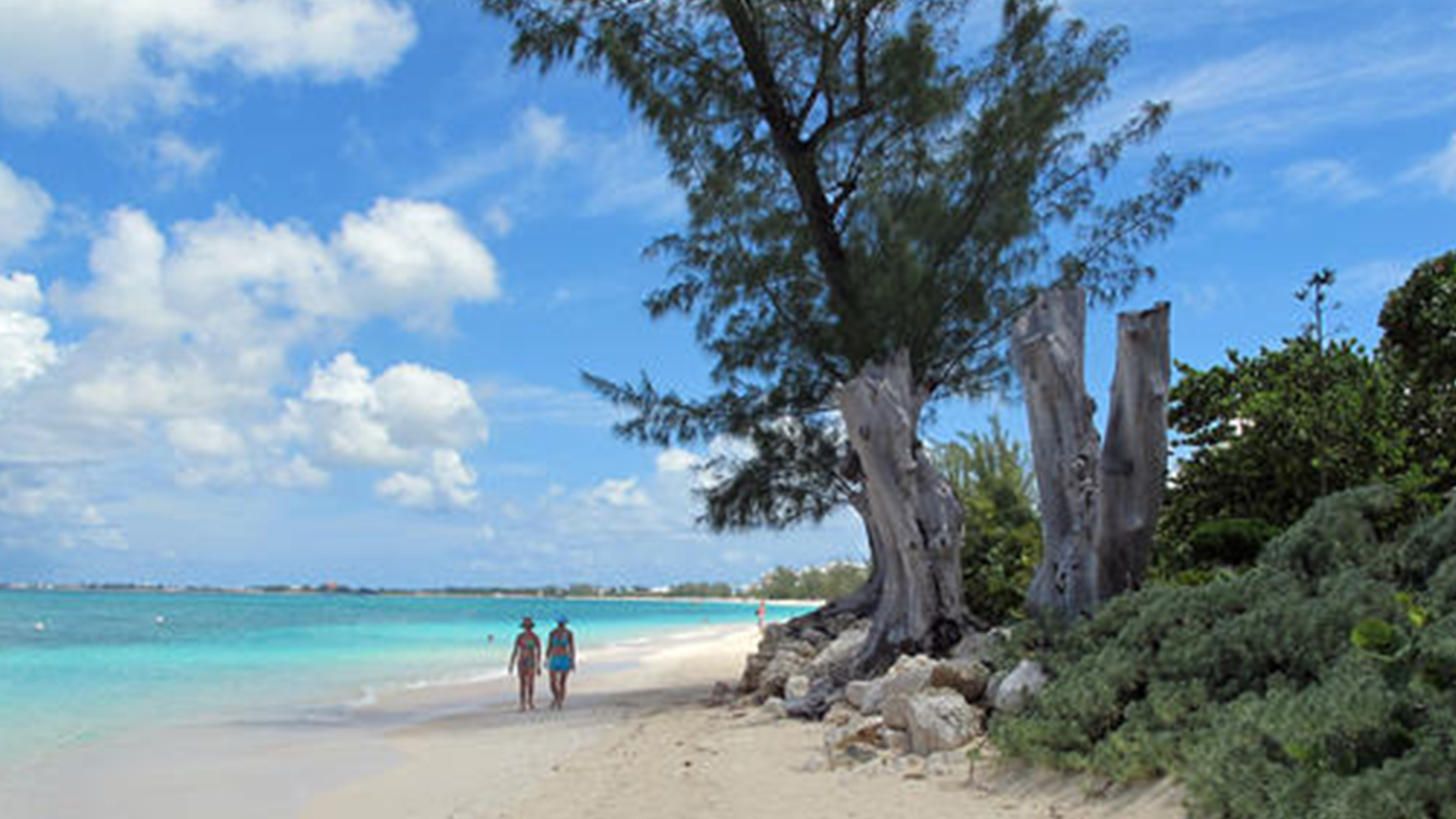 COVID-19 Low – COVID-19 in the Cayman Islands