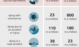 The chance of being killed by a cow and other AstraZeneca vaccine risk comparisons explained
