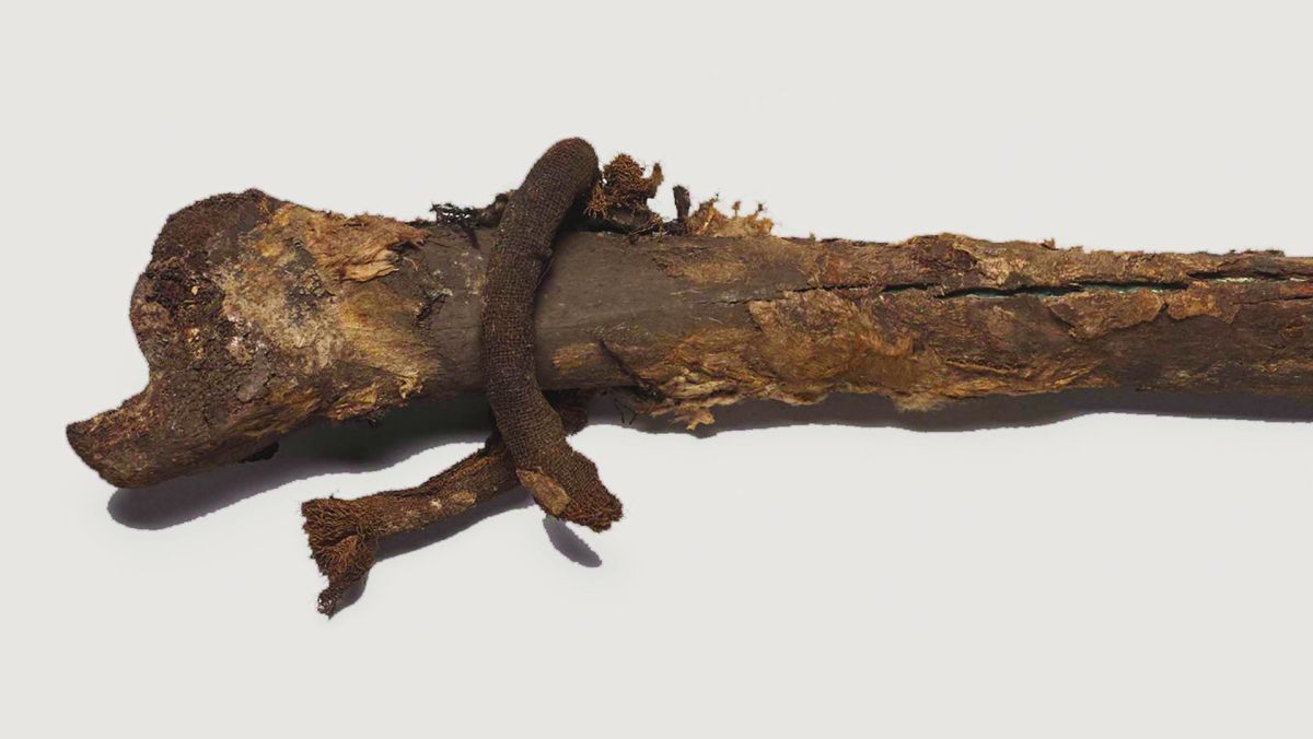 Mystery of a fancy-pants Viking noble's long-lost bones solved by archaeologists in Denmark