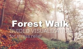 Video » Guided Visualization: Dealing with Stress