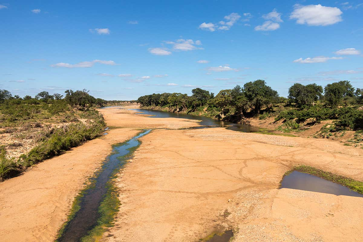60 per cent of world's rivers stop flowing for at least one day a year