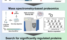 Amyloidogenic proteins in the SARS-CoV and SARS-CoV-2 proteomes