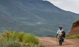 COVID-19 High – COVID-19 in Lesotho