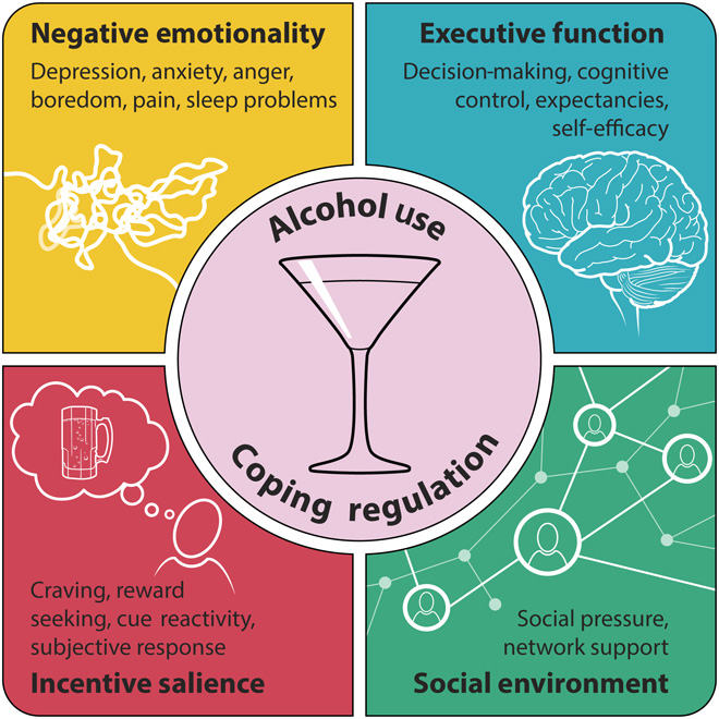 expert reaction to study looking at alcohol consumption, including within UK guidelines, and structural images of organ systems