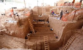 Newly identified ancestor of Neanderthals complicates the human story