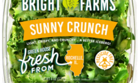 CDC warns of Salmonella infections linked to BrightFarms brand Sunny Crunch Salad