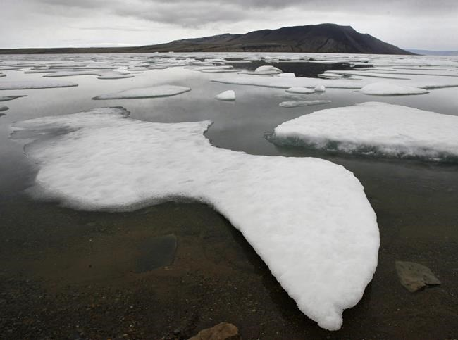 'Last Ice Area' in the Arctic may not survive climate change